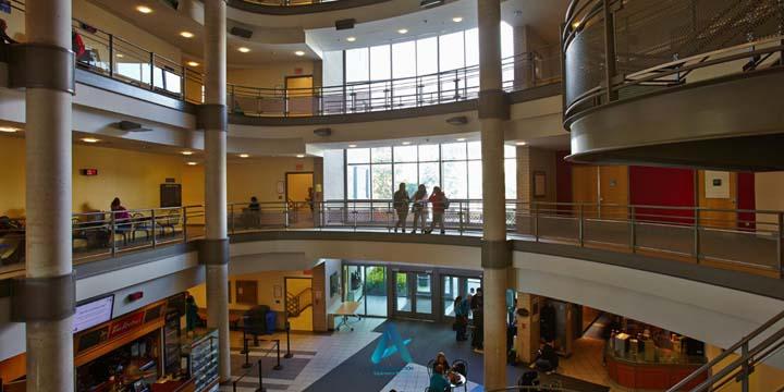 دانشکده های دانشگاه مک مستر
