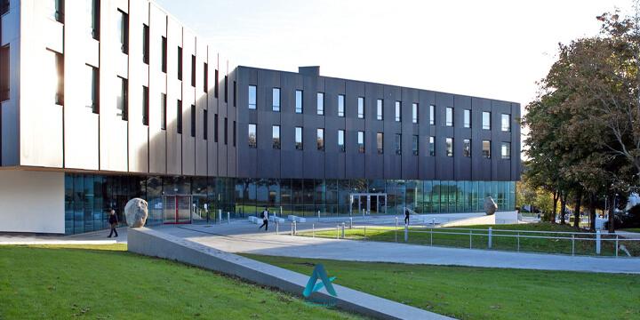 دانشگاه استاوانگر ((University of Stavanger)
