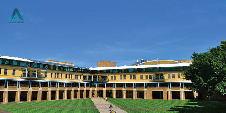 دانشگاه نیو سافت ولز